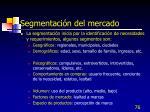 segmentaci n del mercado