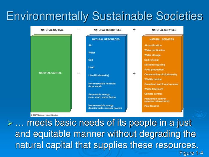 Environmentally Sustainable Societies