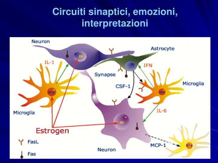 Circuiti sinaptici, emozioni, interpretazioni