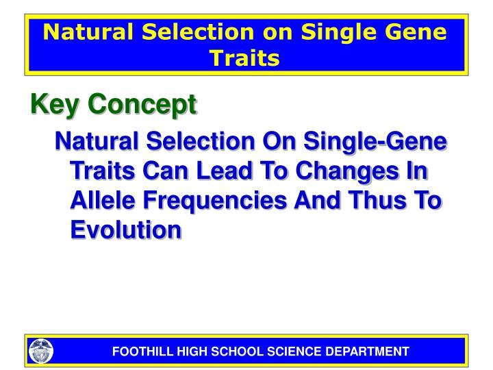 Natural Selection on Single Gene Traits