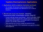 capillary electrophoresis applications