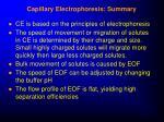 capillary electrophoresis summary
