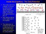 inside the capillary the zeta potential