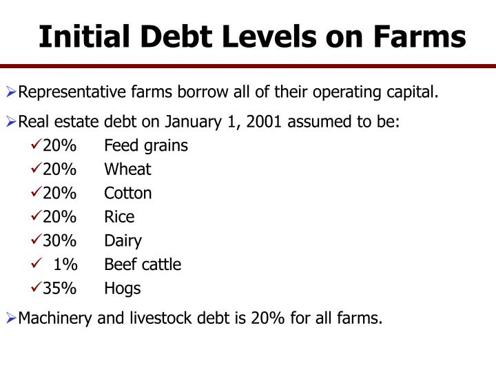 Initial debt levels on farms