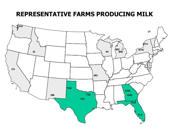 REPRESENTATIVE FARMS PRODUCING MILK
