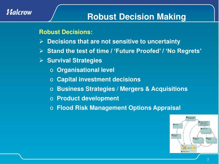 Robust Decision Making