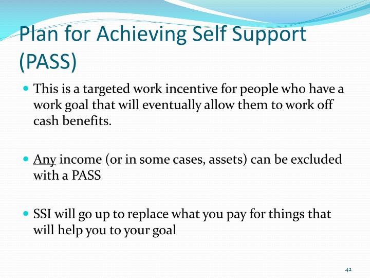 Plan for Achieving Self Support (PASS)