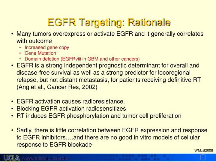 EGFR Targeting: Rationale