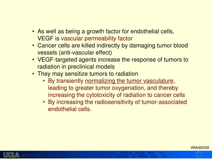 As well as being a growth factor for endothelial cells, VEGF is