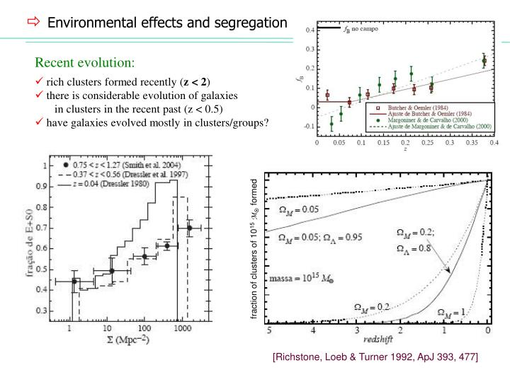 Environmental effects and segregation