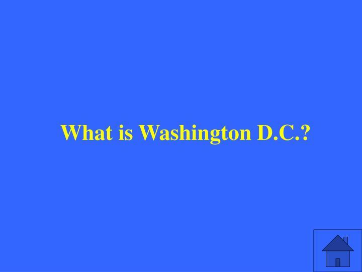 What is Washington D.C.?
