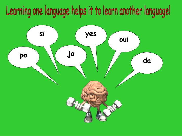 Learning one language helps it to learn another language!