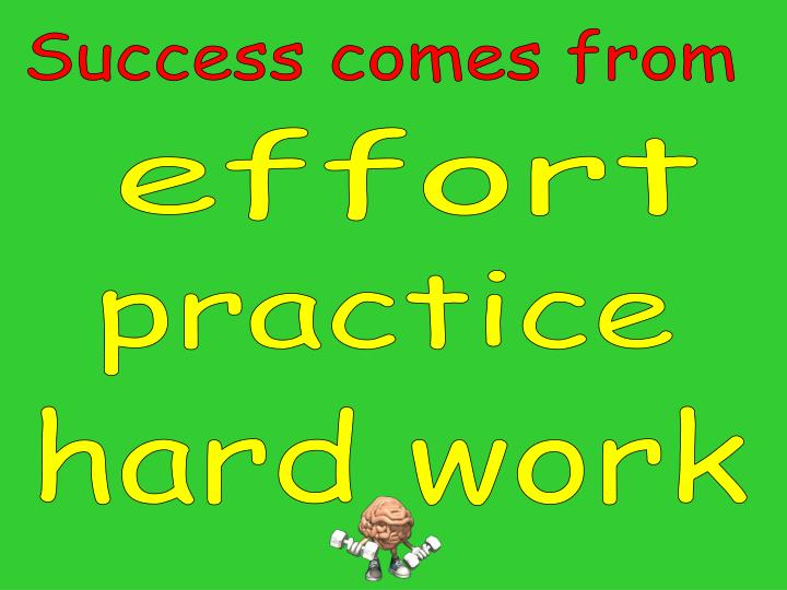 Success comes from