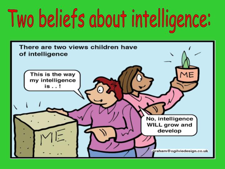 Two beliefs about intelligence: