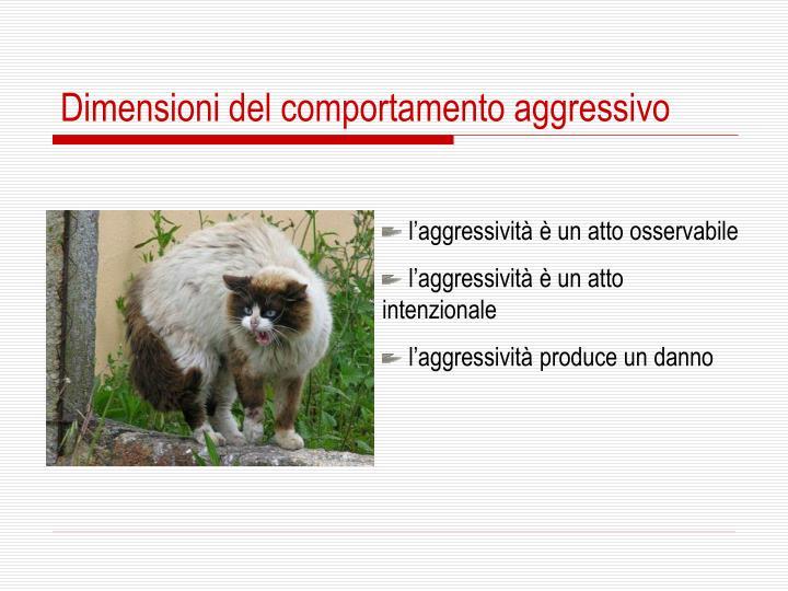 Dimensioni del comportamento aggressivo