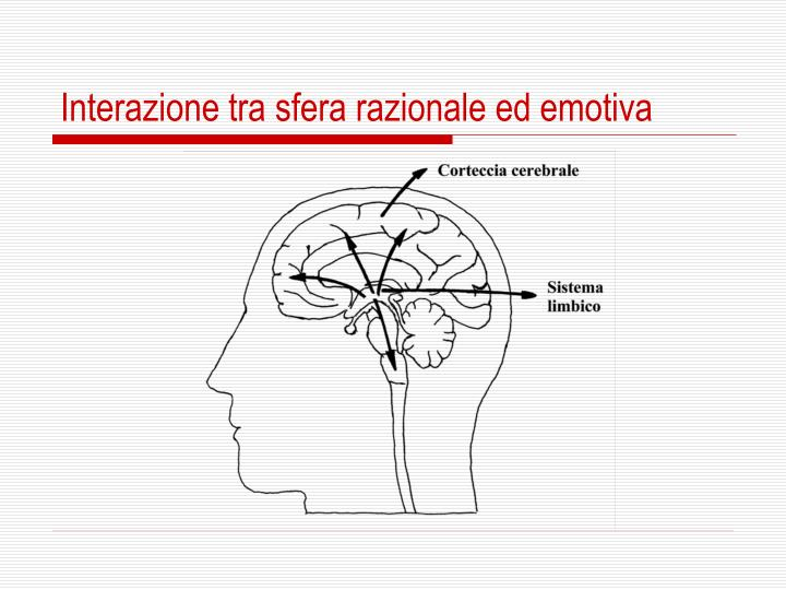 Interazione tra sfera razionale ed emotiva