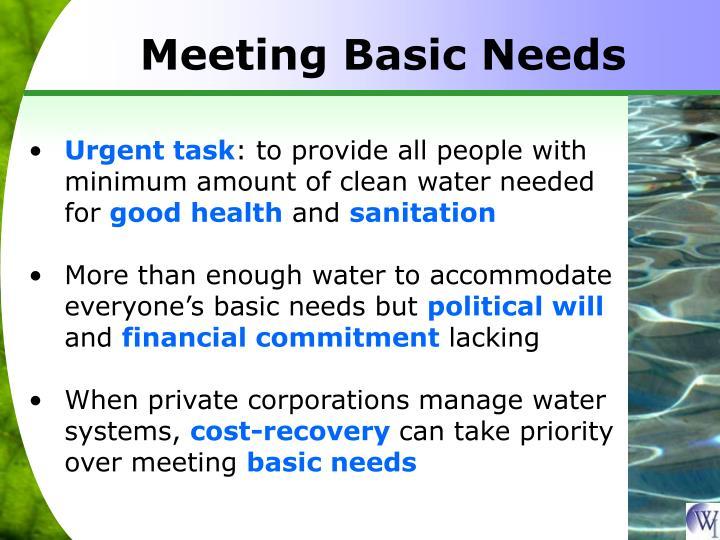 Meeting Basic Needs