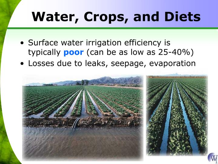 Water, Crops, and Diets