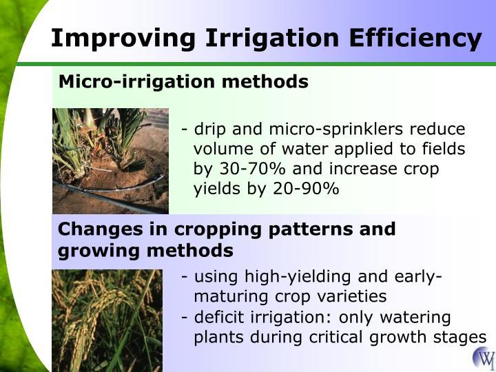 Micro-irrigation methods