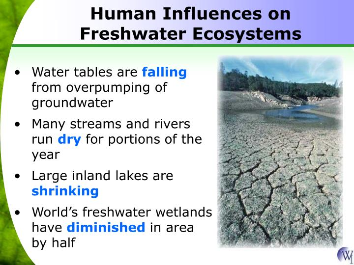 Human Influences on Freshwater Ecosystems