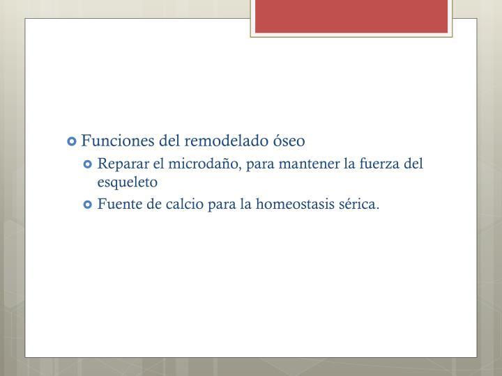 Funciones del remodelado óseo