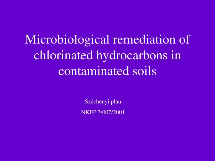 microbiological remediation of chlorinated hydrocarbons in contaminated soils