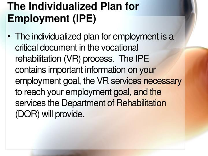 The Individualized Plan for Employment (IPE)