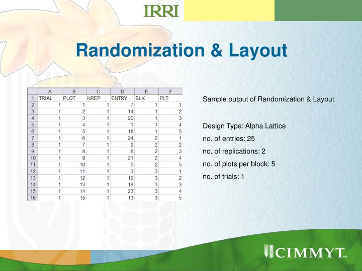 Randomization & Layout