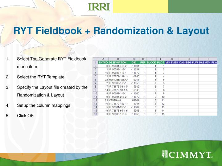 RYT Fieldbook + Randomization & Layout