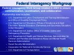 federal interagency workgroup