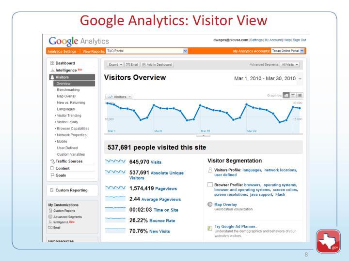 Google Analytics: Visitor View