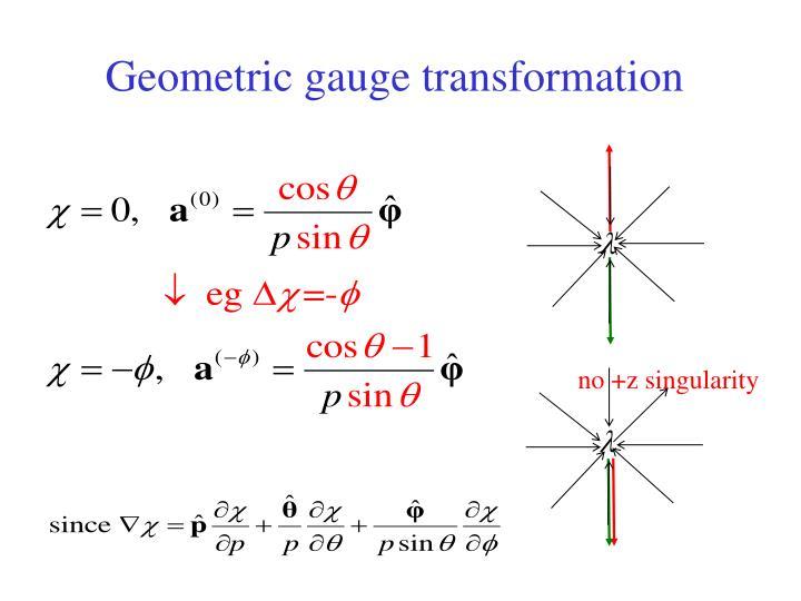 Geometric gauge transformation