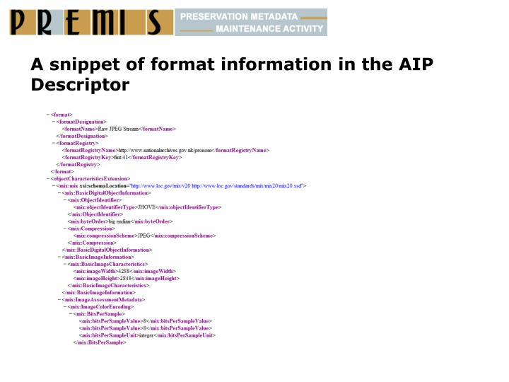 A snippet of format information in the AIP Descriptor