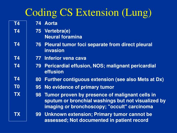 Coding CS Extension (Lung)
