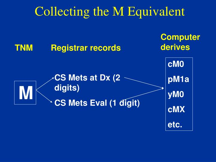 Collecting the M Equivalent