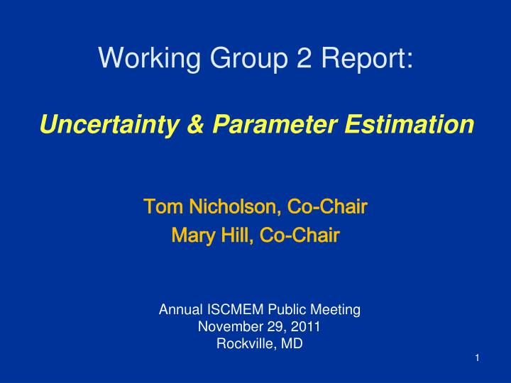 Working group 2 report uncertainty parameter estimation