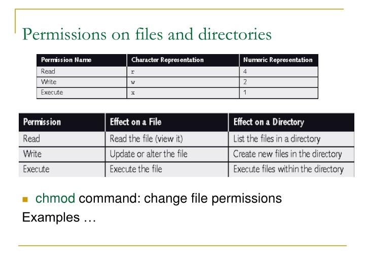 Permissions on files and directories