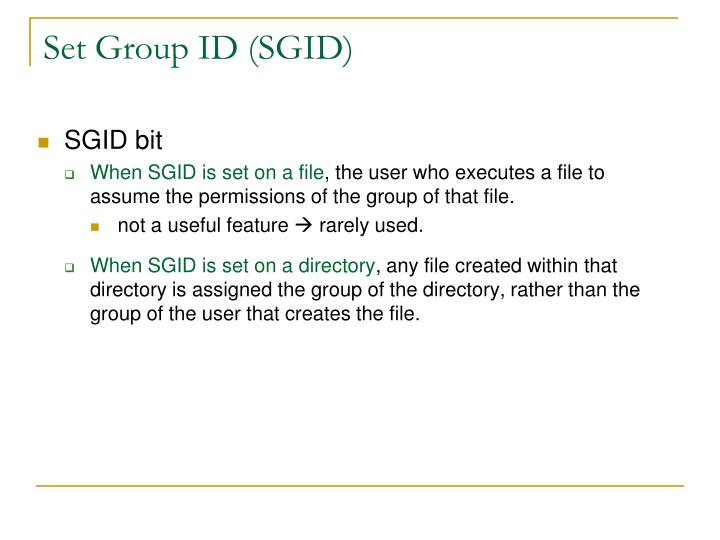 Set Group ID (SGID)