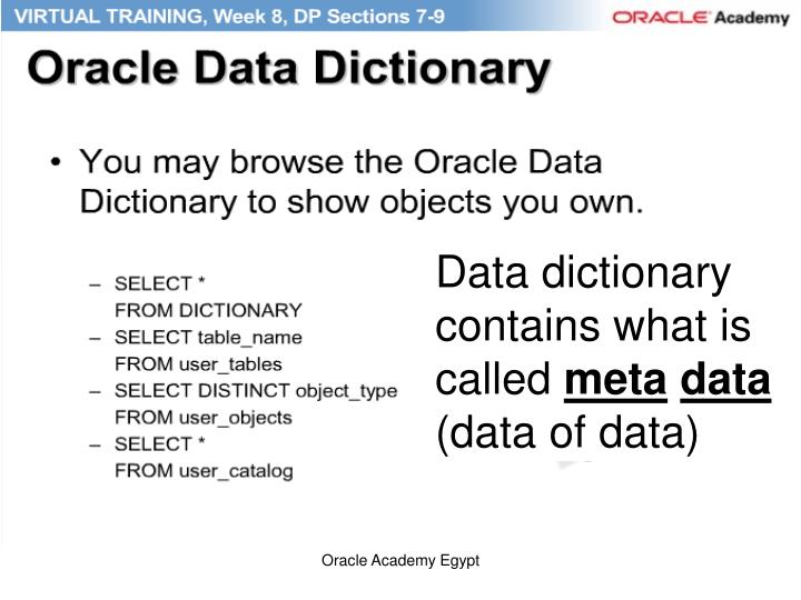 Data dictionary contains what is called