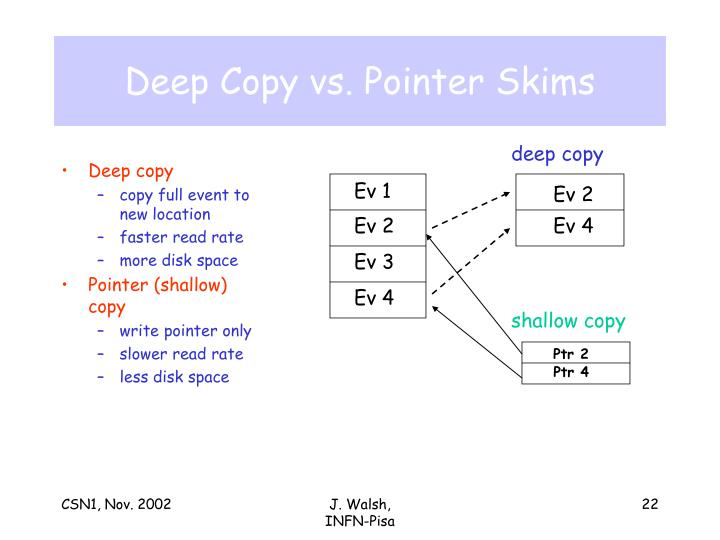 Deep Copy vs. Pointer Skims