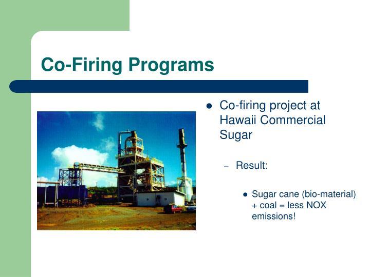 Co-Firing Programs