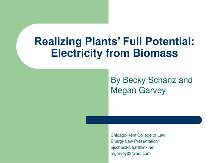 realizing plants full potential electricity from biomass n.