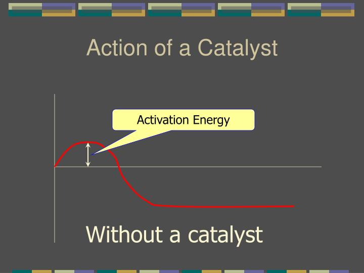 Action of a Catalyst