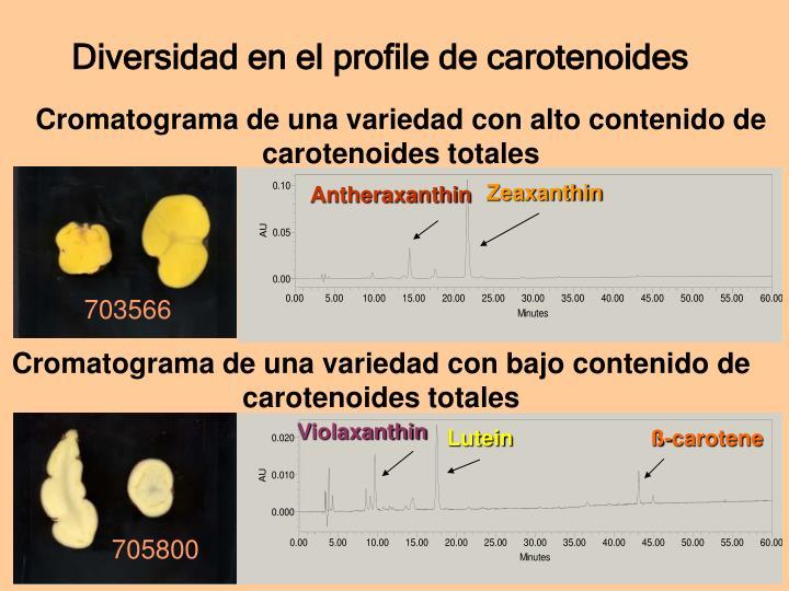 Diversidad en el profile de carotenoides