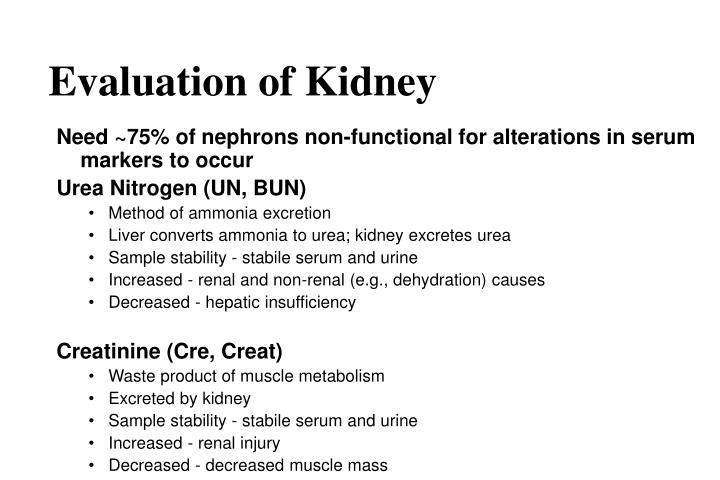Evaluation of Kidney
