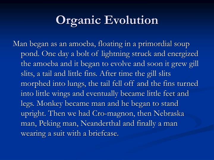 Organic Evolution