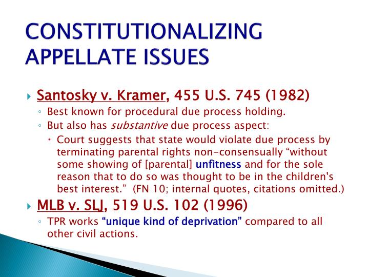 CONSTITUTIONALIZING APPELLATE ISSUES