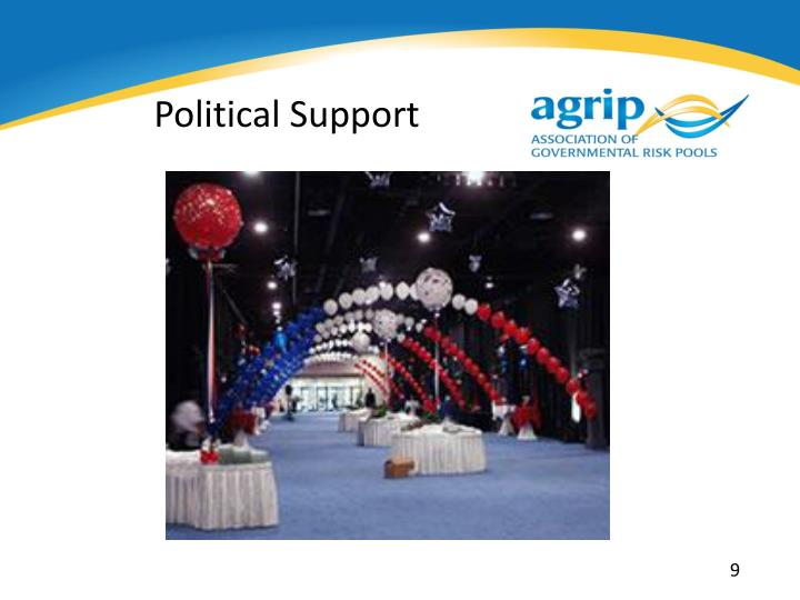 Political Support