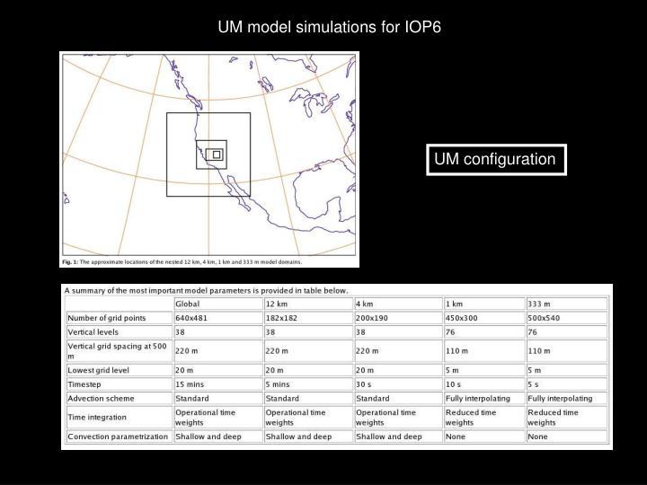 UM model simulations for IOP6