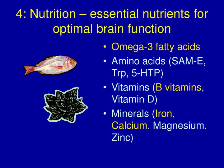4: Nutrition – essential nutrients for optimal brain function